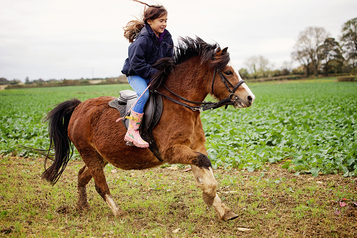 Horse_riding_Cotswolds_Sharron_Goodyear_Photography13